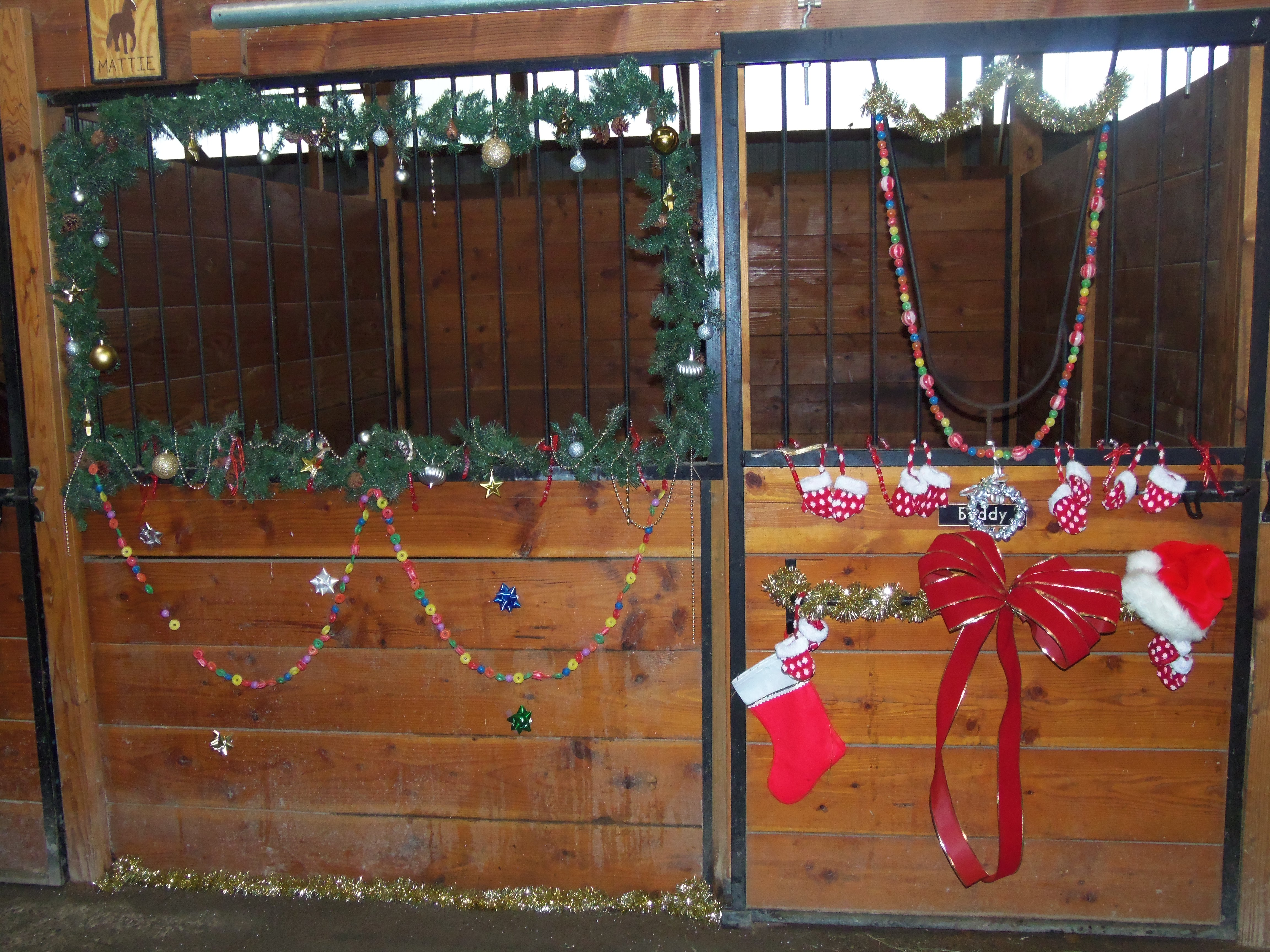 Christmas Decorations For Your Horse : Decorating horse stalls for christmas