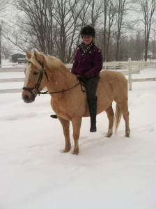 what to do with horses in cold weather